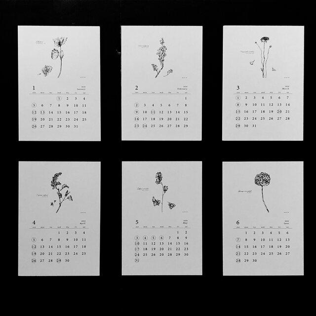 植物語(しょくぶつがたり)2020  ポストカードカレンダーの画像1枚目
