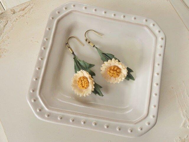 〈染め花〉秋色のmini daisy ピアス(オフホワイト)の画像1枚目