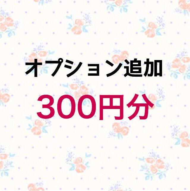 【300円】オプション追加の画像1枚目