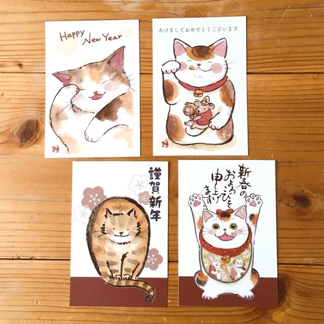 猫の年賀状:お得4枚セットの画像1枚目
