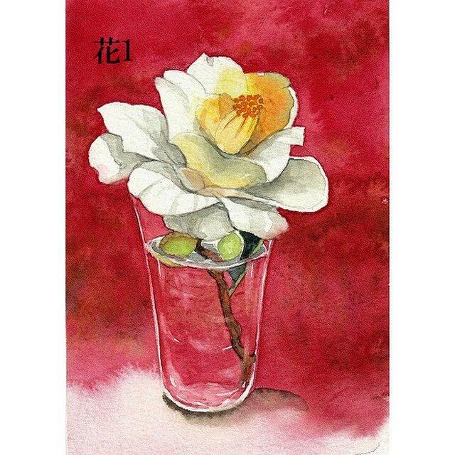 ポストカード「花1・椿の花」選べる2枚セットの画像1枚目