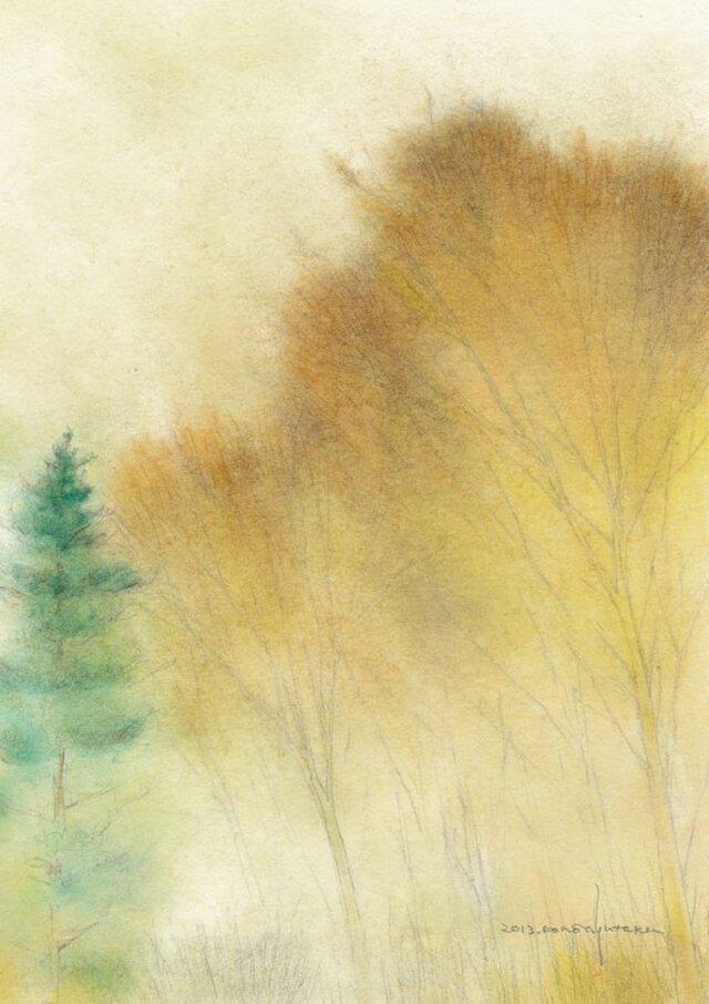 秋の森 (額縁付き)の画像1枚目