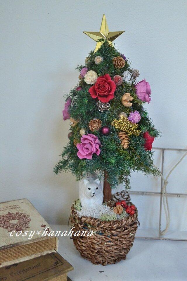 白クマとクリスマスツリーの画像1枚目