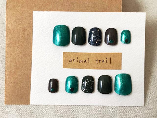 animal trail:獣道の画像1枚目
