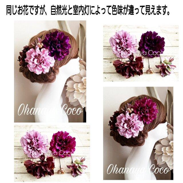 艶姫ダリアとチョコレート紫陽花の髪飾り5点Set No646の画像1枚目