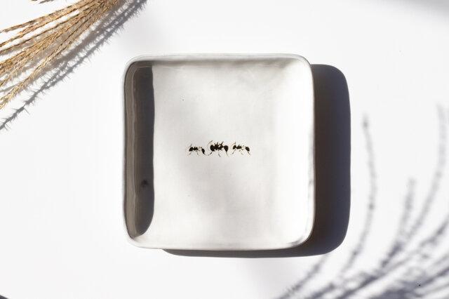 粉引真四角皿-中-(アリ)の画像1枚目