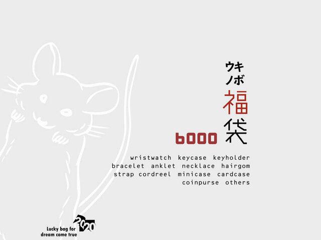 2020夢も希望も叶える☆HAPPY BAG「キボウノ福袋」¥12000相当~リクエスト可能の画像1枚目
