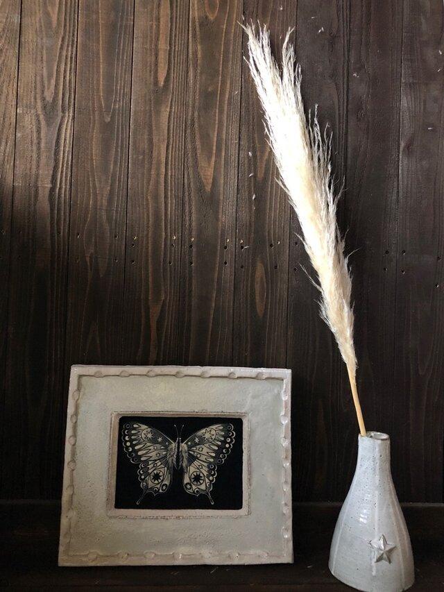 パンパスグラス Bクラス  ドライフラワー 花材 オフホワイト ふわふわのボリューム感が違います インテリアなどに★星月猫の画像1枚目