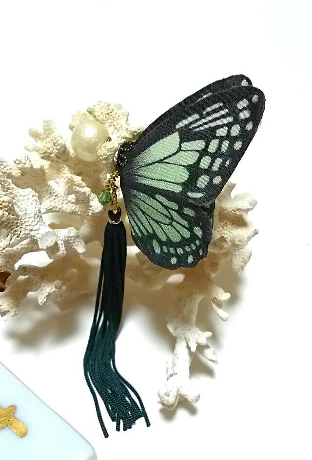 蝶のピアス (大) アサギマダラの画像1枚目