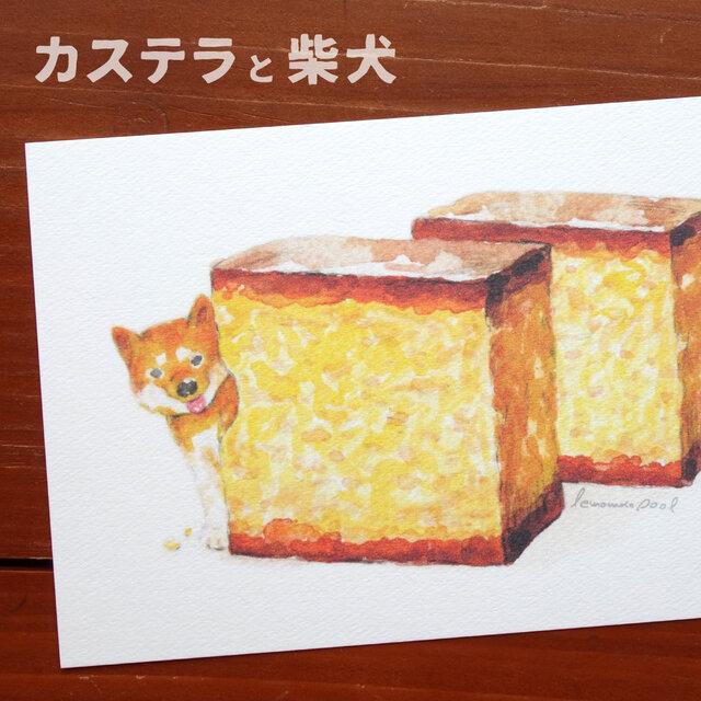3枚セット★「カステラと柴犬」ポストカードの画像1枚目