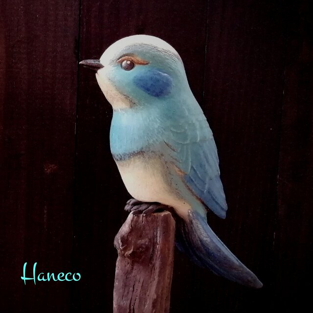 青色の鳥 no.11の画像1枚目