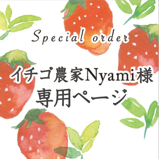 イチゴ農家Nyami様専用ページの画像1枚目