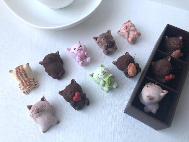 選べるチョコレートみたいな猫さんトリオの画像1枚目