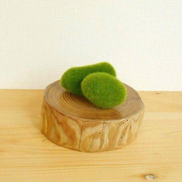【温泉流木】年輪と側面の模様が美しい丸太輪切りの台座 置き台 流木インテリアの画像1枚目
