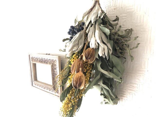 Mimosa Anique Bouquet Lサイズの画像1枚目