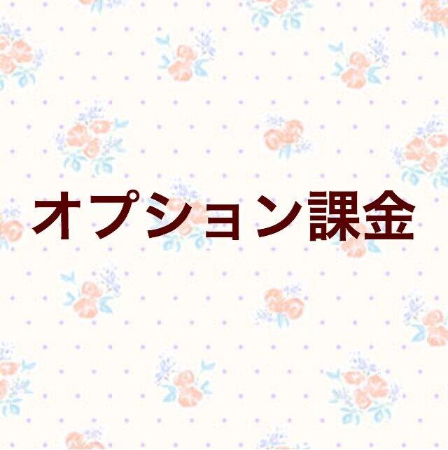 【3700円】オプション追加の画像1枚目
