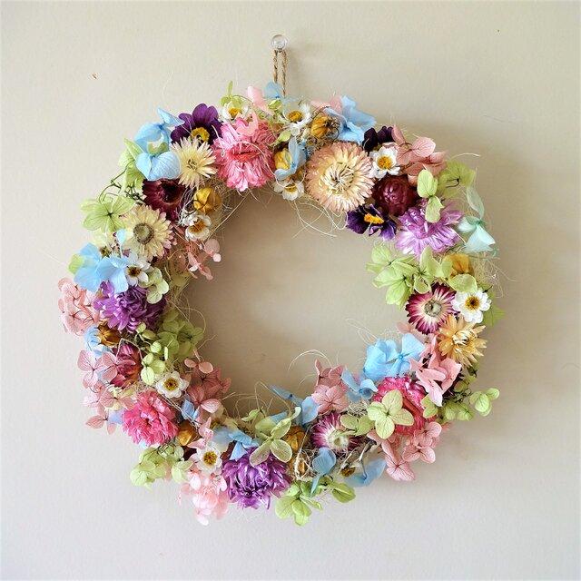24cmお花畑 パステルカラーのドライフラワーリース の画像1枚目