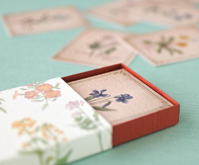野の花の小さな図鑑風メッセージカードBOXの画像1枚目