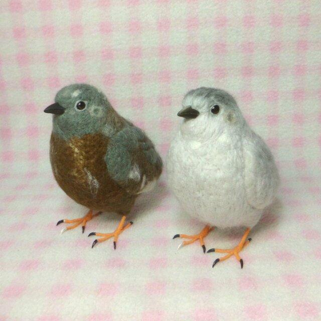 羊毛の小鳥:ライフサイズ(1/1サイズ)1羽:ヒメウズラ 「うちの子オーダー」作成可能の画像1枚目