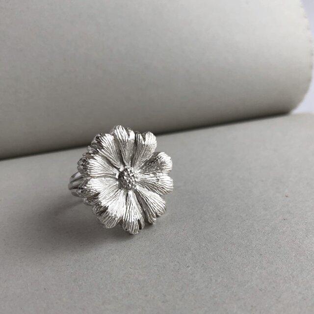 世界にひとつだけの花:花のシルバーリング【tk18005】の画像1枚目