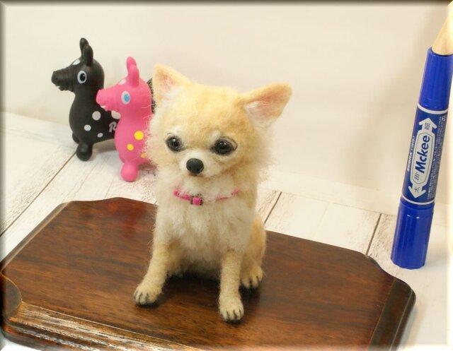 羊毛フェルト 犬 チワワさん クリーム いぬ イヌ 犬フィギュアの画像1枚目