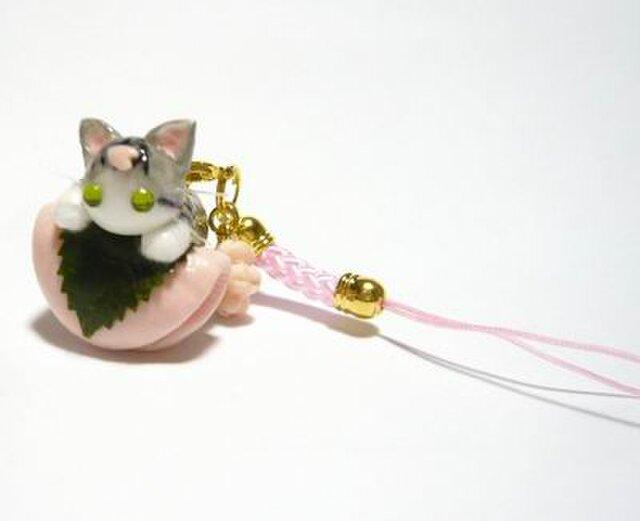 にゃんこのしっぽ○桜餅ストラップ〇桜〇さば白〇猫の画像1枚目