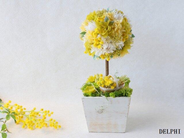 ミモザと紫陽花のトピアリー(花かごに摘んで)【プリザーブドフラワー】お誕生日祝い 開店祝い 新築祝い 母の日ギフトの画像1枚目