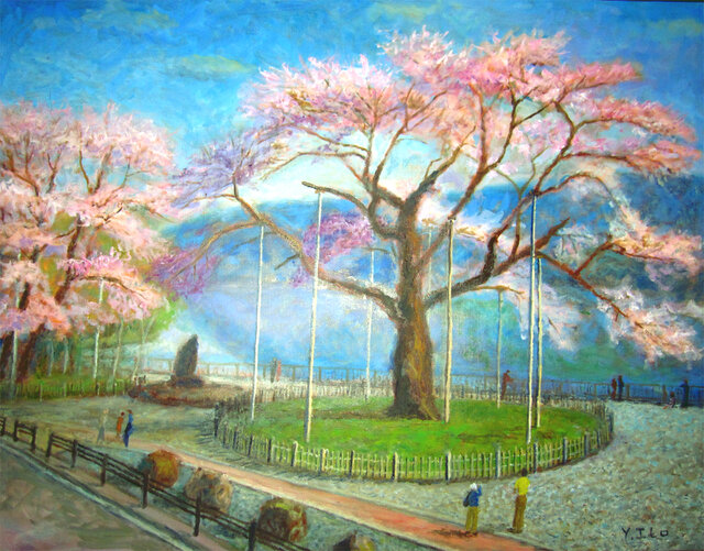 荘川桜の画像1枚目