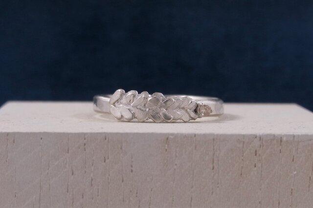 葉とダイヤモンドのリングの画像1枚目