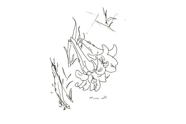 『白ゆり』・インテリア アートの画像1枚目