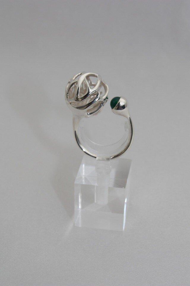 ringの画像1枚目