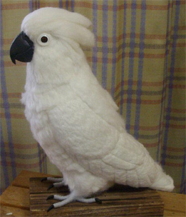 ライフサイズ!タイハクオウム 受注作成 羊毛フェルト 鳥のオブジェ リアルバード 羊毛インコフィギュア オーダー作成可の画像1枚目