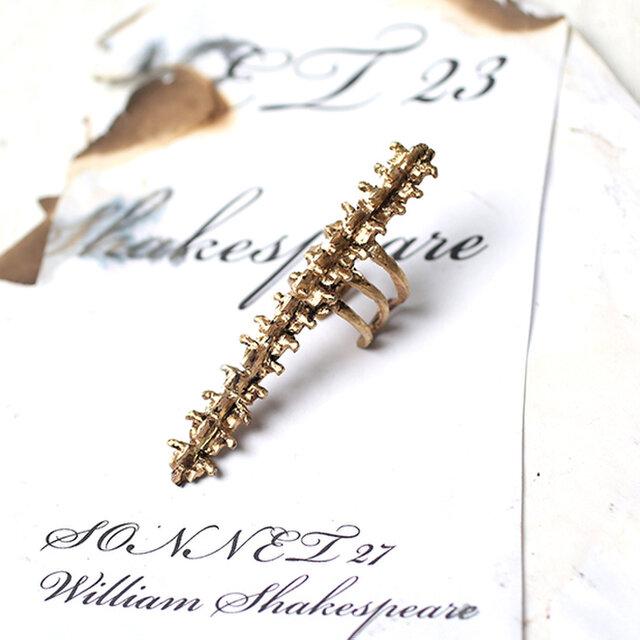 Spine long ringの画像1枚目