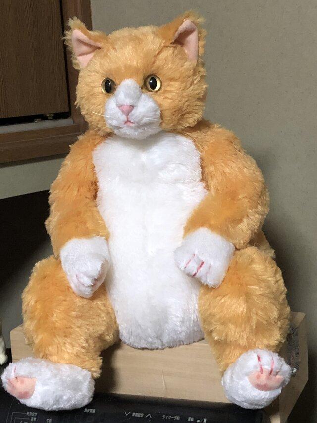 だらりん猫の特注サイズの画像1枚目