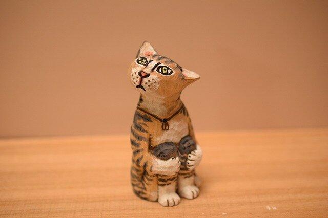ネコのドテちゃん(売れました)の画像1枚目