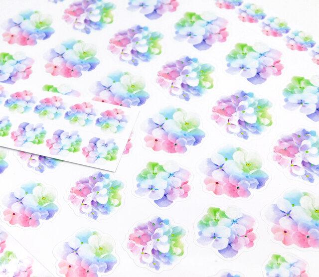 カラフル紫陽花の花びら光沢紙シールの画像1枚目