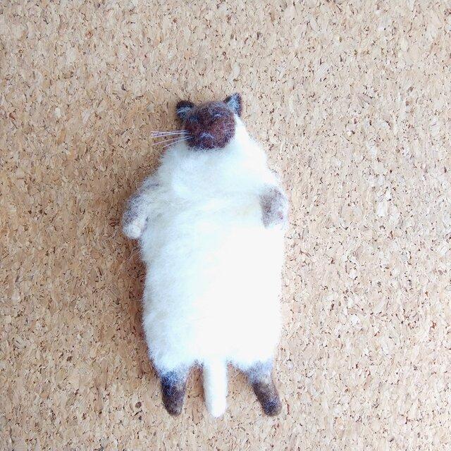 ナデナデ猫トンキニーズ(仰向け)の画像1枚目
