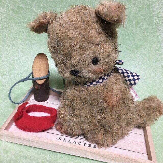 チビと赤い靴の画像1枚目