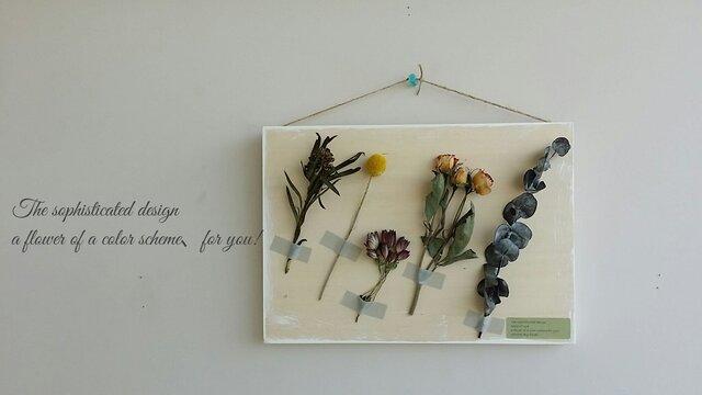 お花のある暮らしを!ボタニカル・ボード♬の画像1枚目