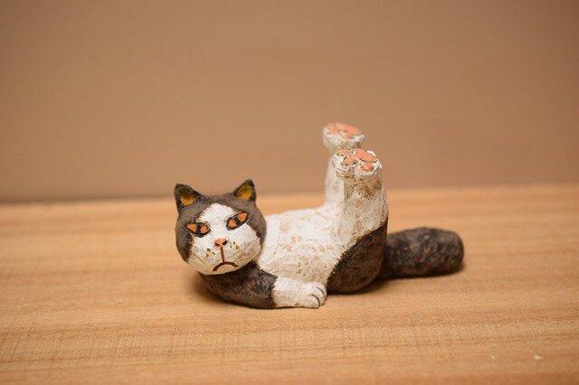 ネコのストレッチたま。の画像1枚目
