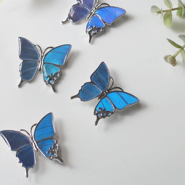 モルフォ蝶のブローチの画像1枚目