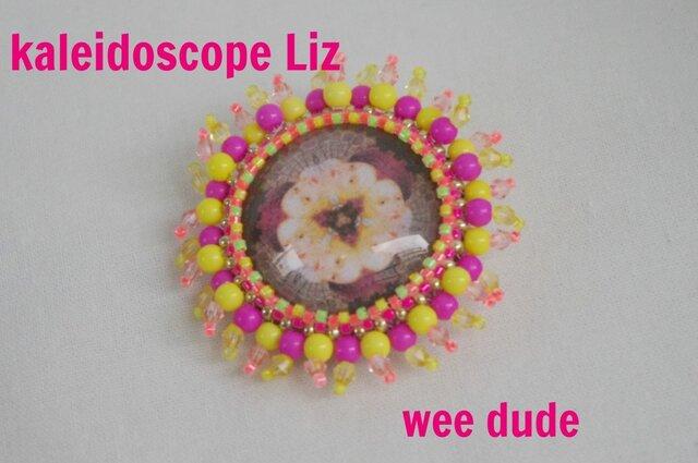 kalidoscope LIZの画像1枚目