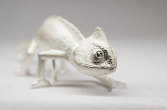 chameleon pinsの画像1枚目