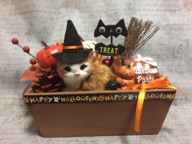 2020猫ちゃんのハロウィンアレンジ ウッドボックス L オレンジ系の画像1枚目