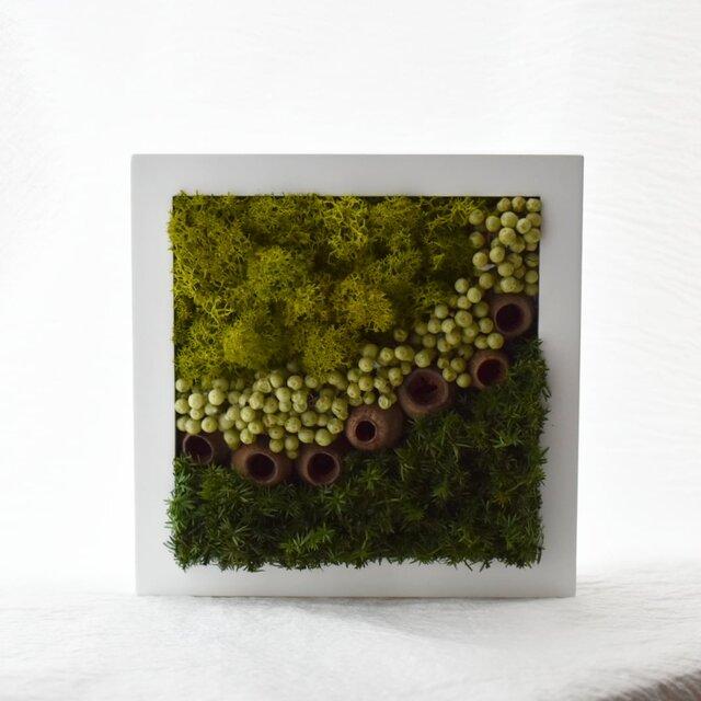 商品番号701「-森-」プリザーブドアートフレームの画像1枚目