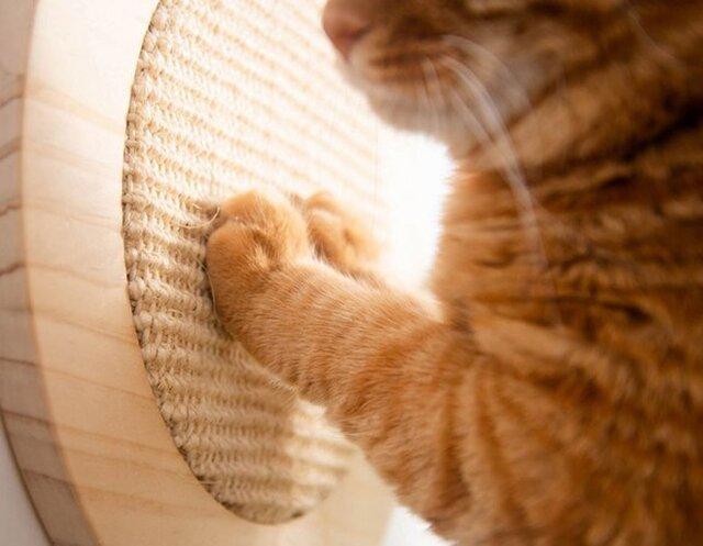受注生産 職人手作り 爪とぎボード スクラッチボード 猫家具 雑貨 おしゃれ 猫の爪 天然木 無垢材 エコ LR2018の画像1枚目
