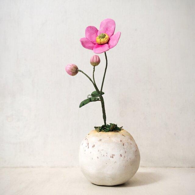 5150.bud 粘土の鉢植え シュウメイギクの画像1枚目