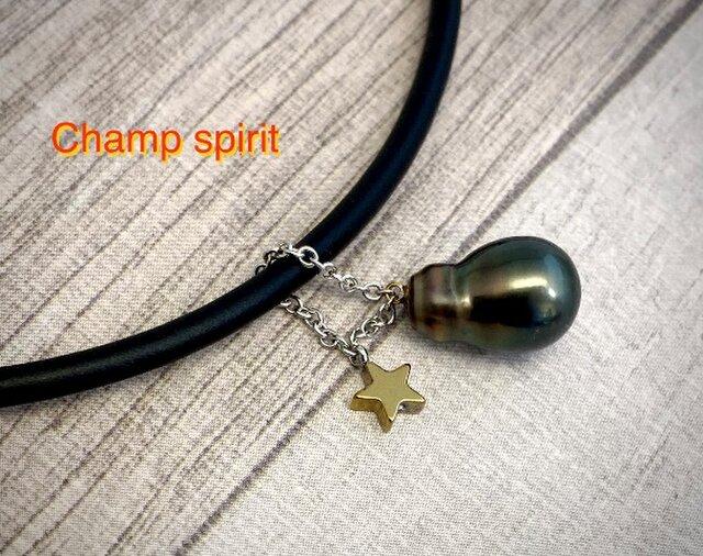 Champ spirit(チャンプスピリット)の画像1枚目