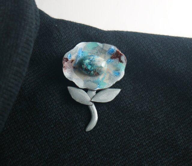 クリソコラの花の画像1枚目