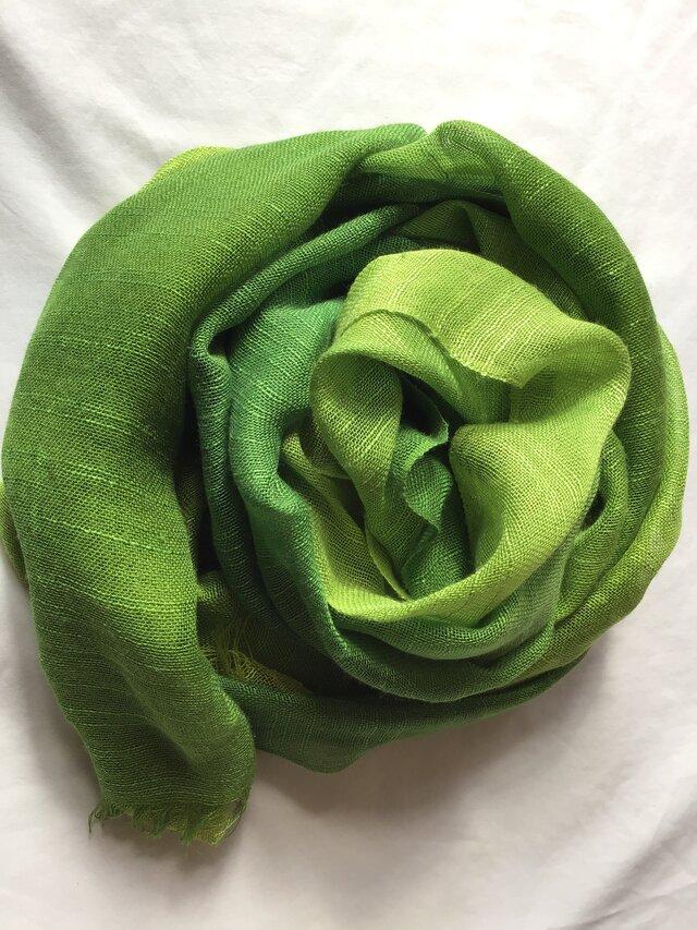 草木染め シルクストール 緑色 コブナグサ+藍 の画像1枚目